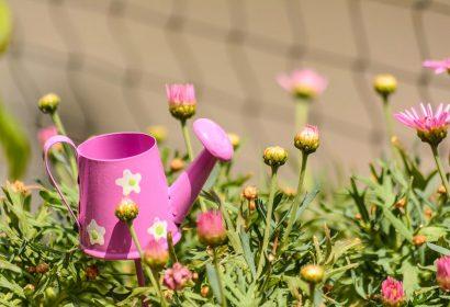 一味違う庭づくりはDIYで!ガーデニングにDIYを取り入れてみよう アイキャッチ画像