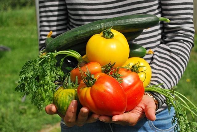 プランター人気10選|育てる野菜別おすすめプランターの選び方を伝授