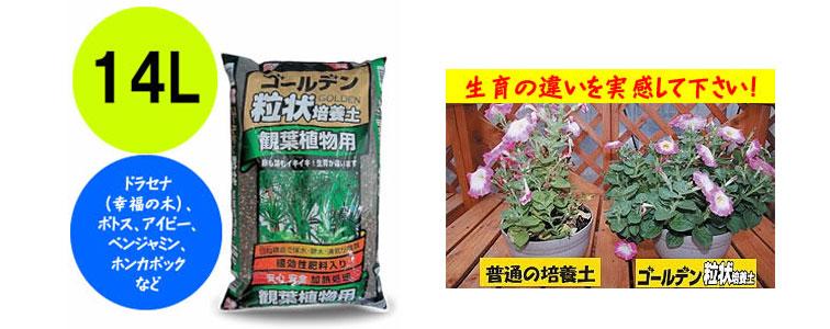 観葉植物用の培養土