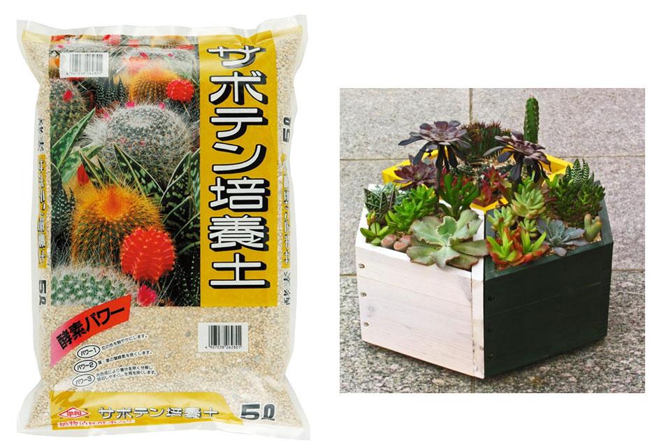 サボテン・多肉植物用の培養土