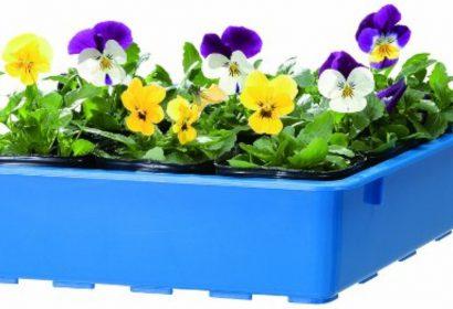 育苗箱おすすめ7選|種まきや育苗ポットの管理に人気!