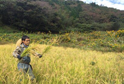 自然農法のやり方を検証して発信するYoutuber。『ちょこっと自然農』の星野さんにインタビューしてみた アイキャッチ画像