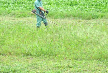草刈りのポイントはこれ!正しいやり方からおすすめ業者まで徹底解説! アイキャッチ画像