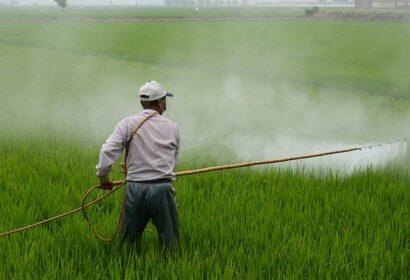 除草剤散布を効率的に!使い方からおすすめの噴霧器10選を詳しく紹介! アイキャッチ画像
