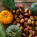 9月が旬の野菜は?旬の野菜は食材宅配サービスでお得にゲット!